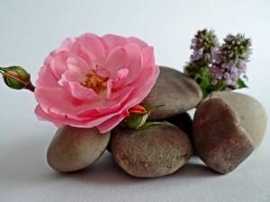 stones-448592